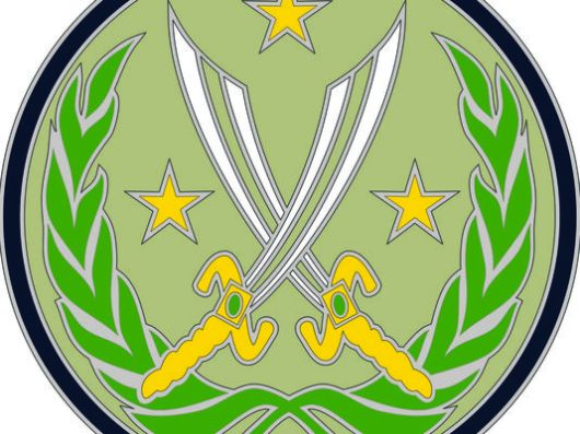 New US Army shoulder patch. Note absence of anything identifiable with the US Army or the United States of America